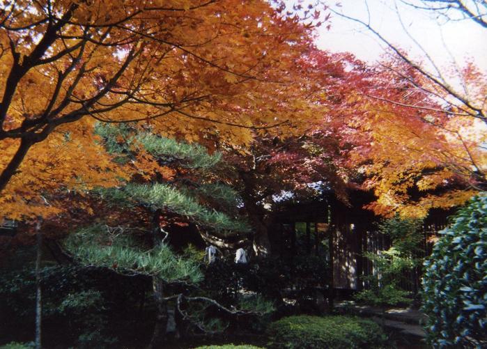 厭離庵:京都